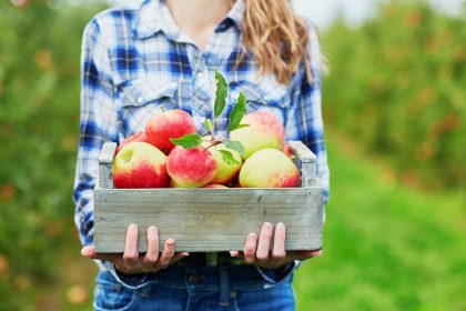 13 Surprising Health Benefits of Apples that'll Have You Eating One (or More) a Day