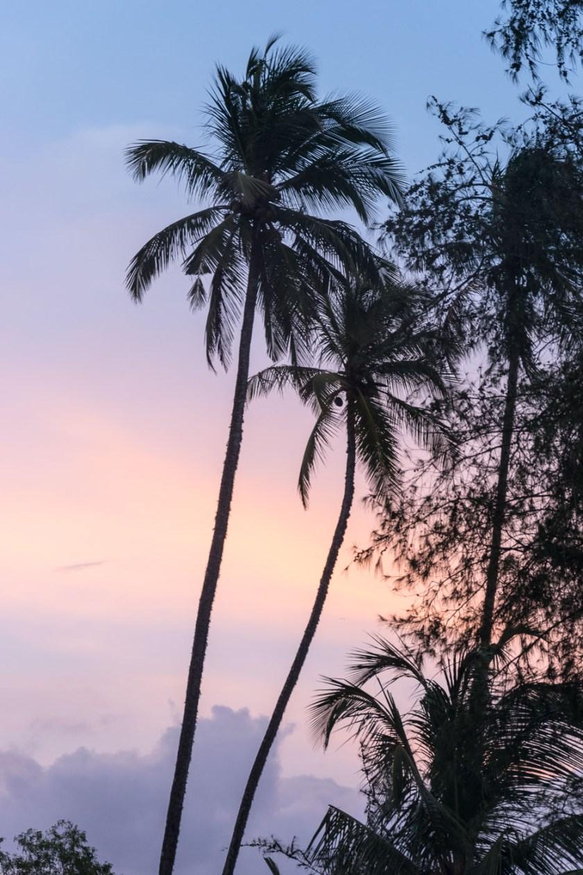 Sri Lanka Sonnenuntergang.