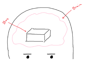 Brain with box