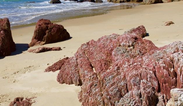 pink rocks on beach