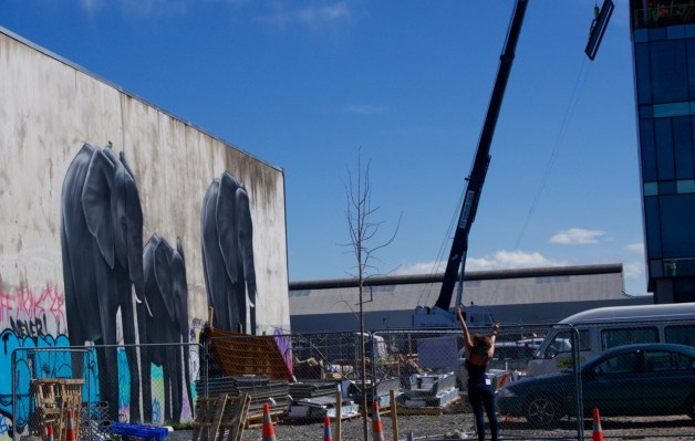 10-2015 Christchurch Rebuilding - 9 of 42