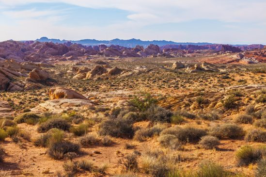 020 Valley of Fire