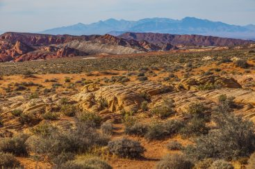 022 Valley of Fire