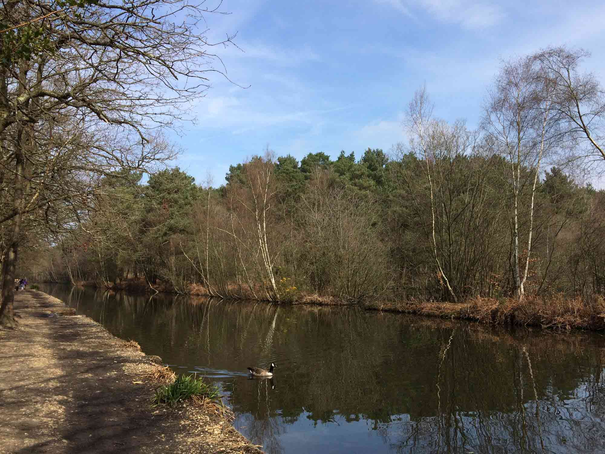 Basingstoke Canal Visitor Centre and Play Area, Mytchett