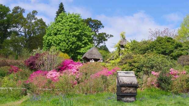 Furzey Gardens, Lyndhurst
