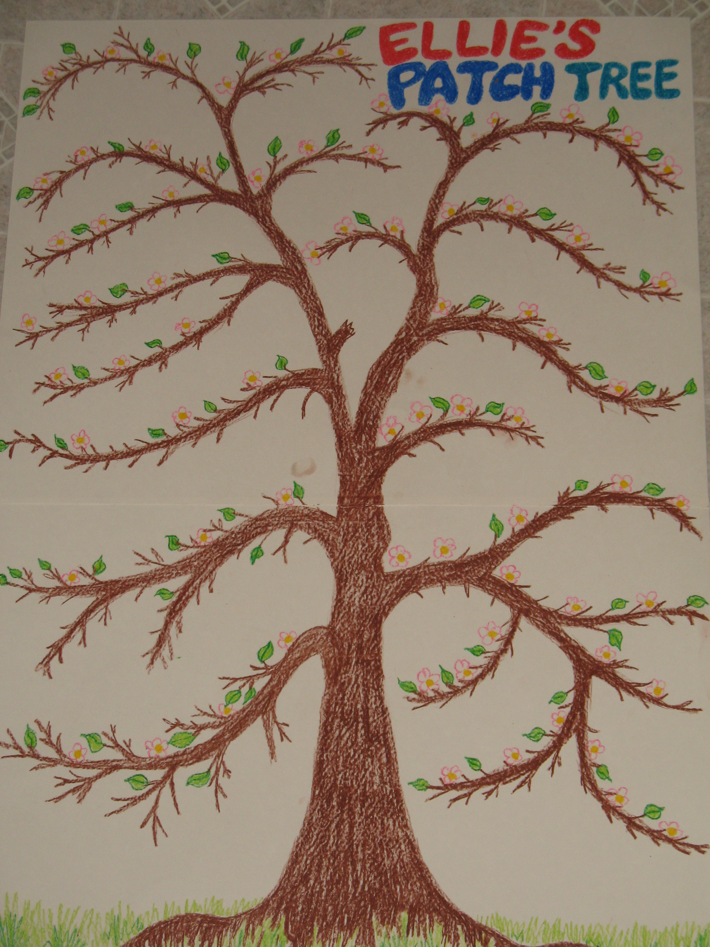 Patch tree