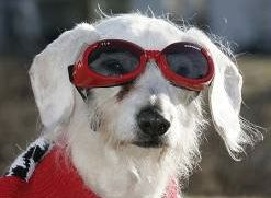 Chanel, 21 years old - wears glasses for cataracts.