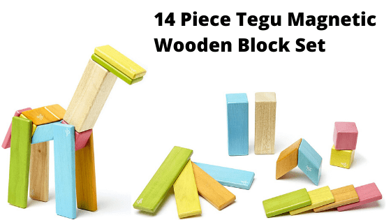 14 Piece Tegu Magnetic Wooden Block Set