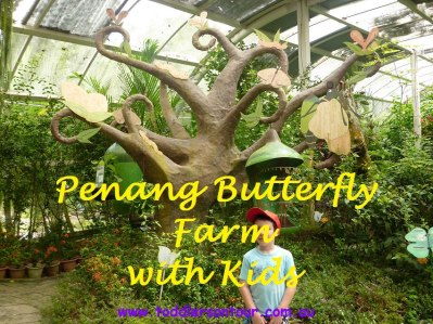 Penang Butterfly Farm with kids