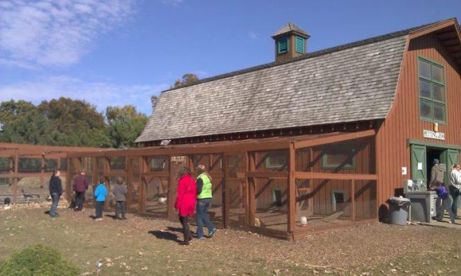 Royal Oak Farm - petting zoo - Toddling Around Chicagoland