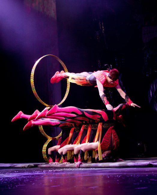 CirqueShanghai HoopDiver