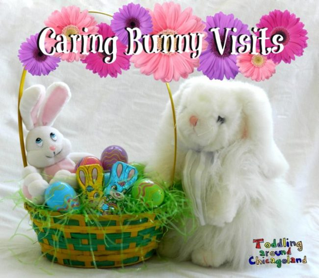 Caring Bunny - 2014 - Toddling Around Chicagoland