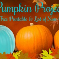 Orange and teal pumpkins - Teal Pumpkin Project