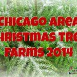 Chicago Area Christmas Tree Farms 2014