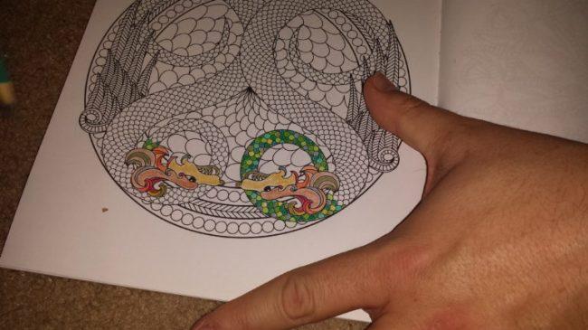 Coloring Animal Mandalas