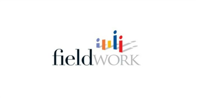 Earn Extra Money with Fieldwork