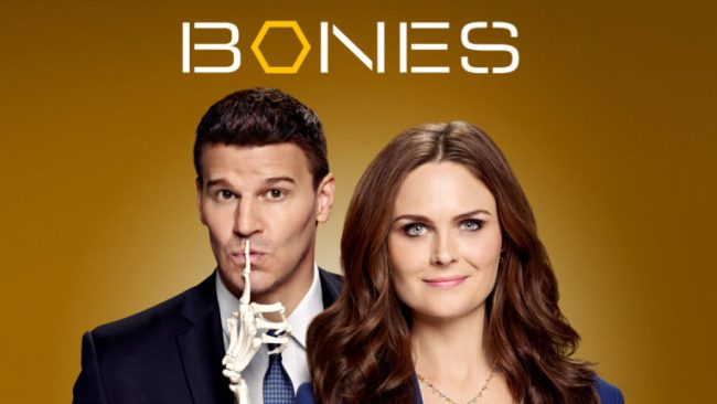 Dust Off Your Shelfies - Netflix #StreamTeam #ad Bones