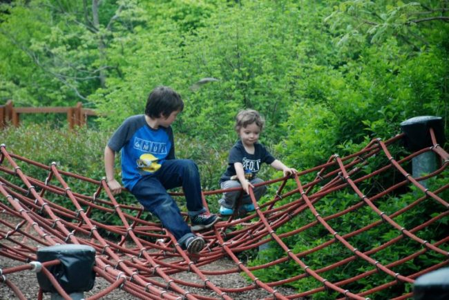 Chicago City Guide sponsored by Chicco #ChiccoKidsCityGuide [ad] - Morton Arboretum web