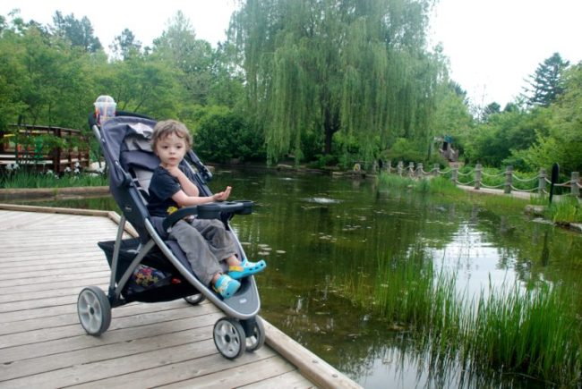 Chicago City Guide sponsored by Chicco #ChiccoKidsCityGuide [ad] - Morton Arboretum pond