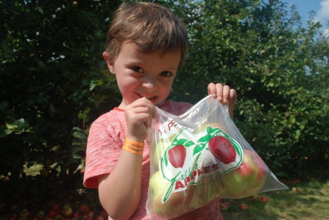 Campbell with apple bag at All Seasons Apple Orchard