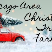 Car with a tree on top - Christmas Tree Farms in Chicago Area