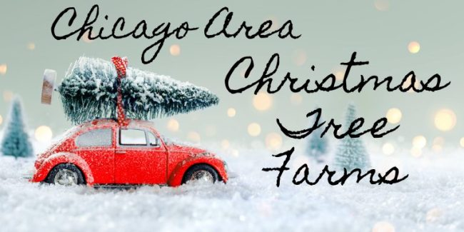 Car with a tree on top - Chicago Christmas Tree Farms