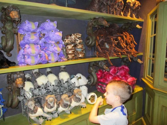 Stuffed animals on display at Magical Creatures at the Wizarding World of Harry Potter