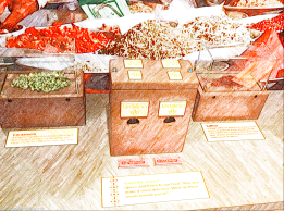 Spices to see and smell - Children's Museum of Manhattan