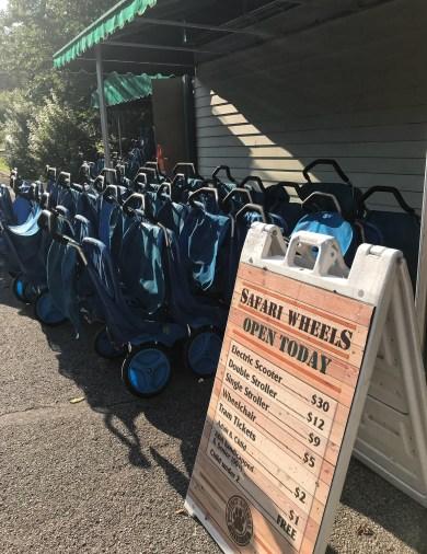 Pittsburgh Zoo Stroller Rentals
