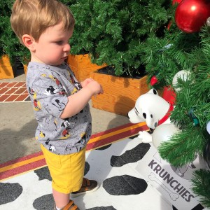 Christmas Tree Trail Disney Springs Toddling Traveler