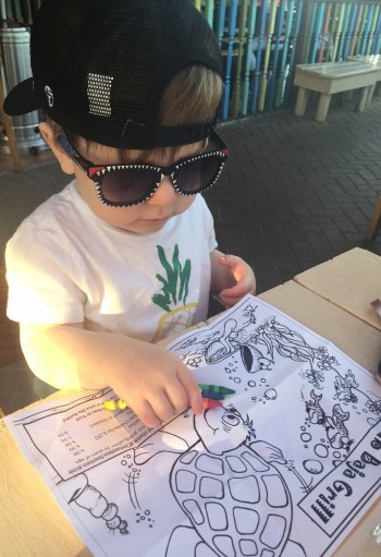Kid Friendly Restaurants Siesta Key