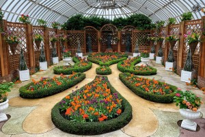 Phipps conservatory broderie room