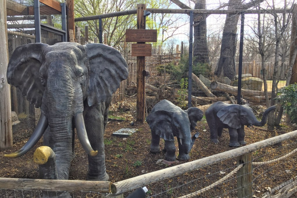 Boise with Kids: Zoo Boise Elephant Display