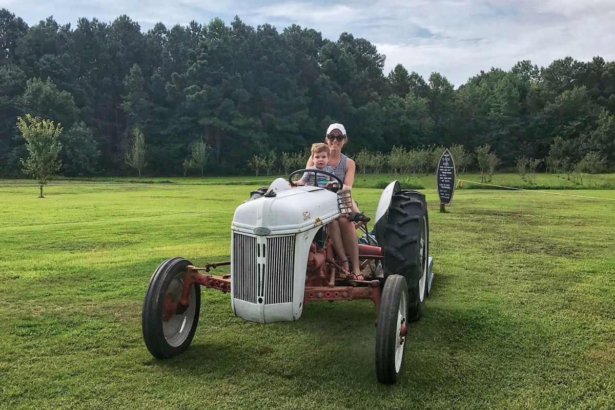 Berlin Farm Sinepuxent Things to Do in Berlin, MD Toddling Traveler
