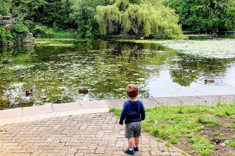 St Stephen's Green Pond 48 Hours in Dublin Toddling Traveler