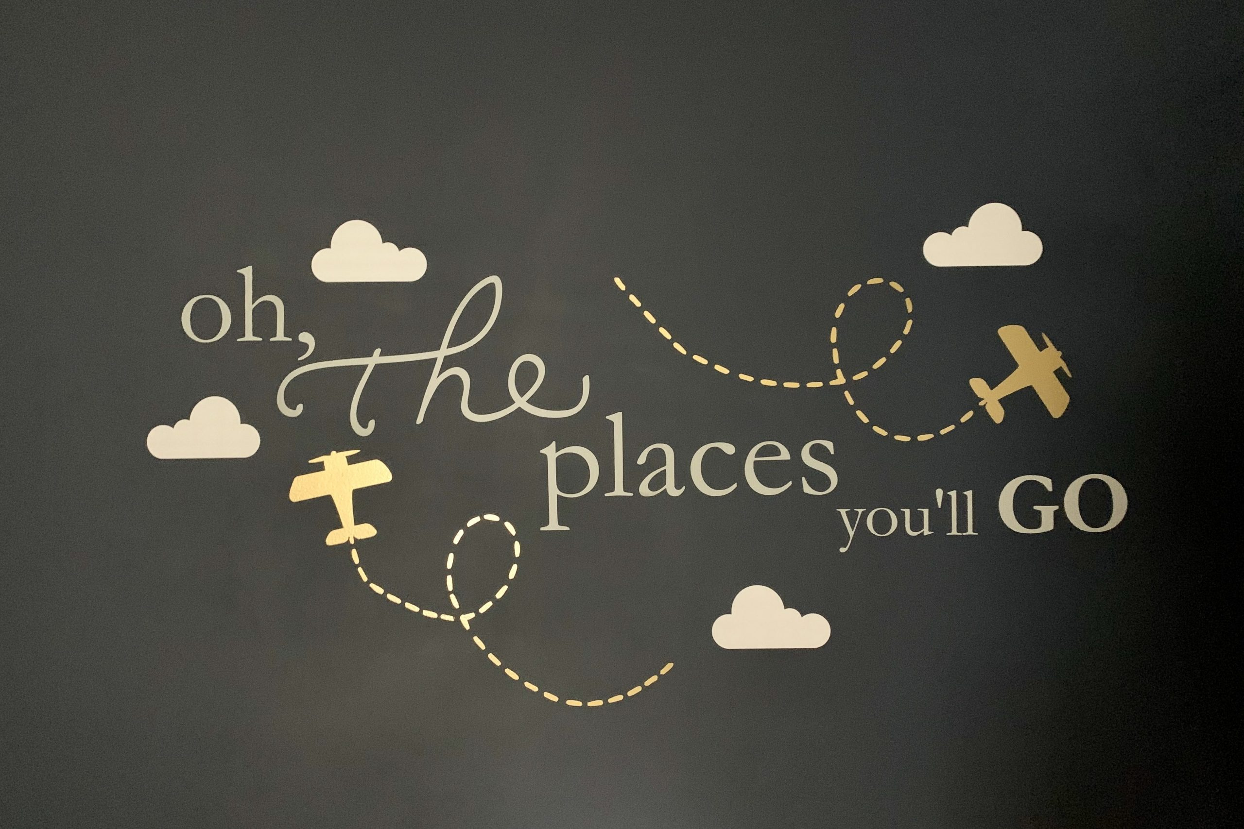 Oh the Places You'll Go Wall Decal Travel Themed Nursery Toddling Traveler