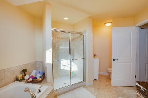 25500 Meadow Ct South Lyon MI master bathroom2