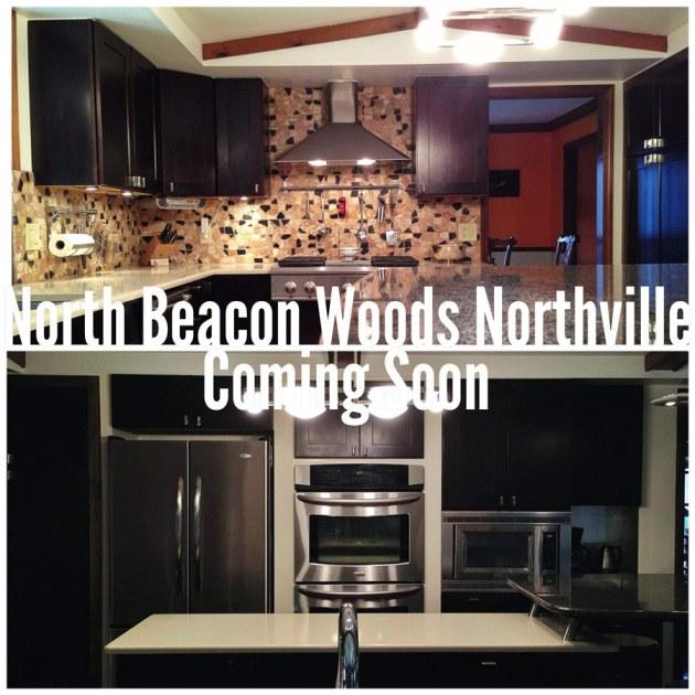 46317 N Valley Dr Northville MI