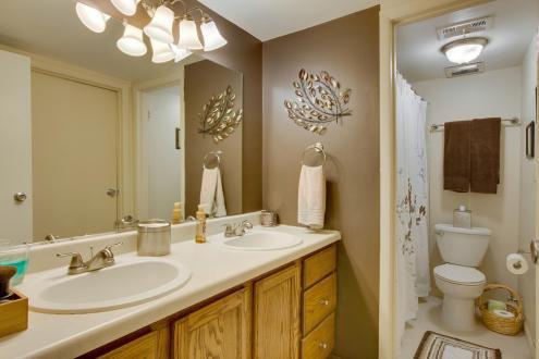 783 Skynob Ann Arbor MI 48105 011-Bathroom