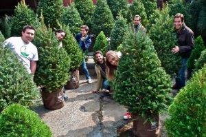 Una Navidad sustentable