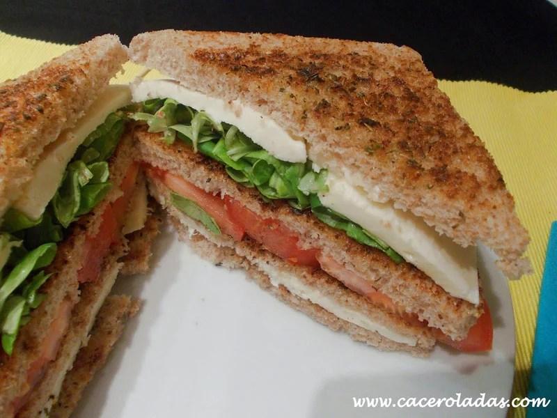 Sandwich vegetal con mozzarella recopilación de sándwiches