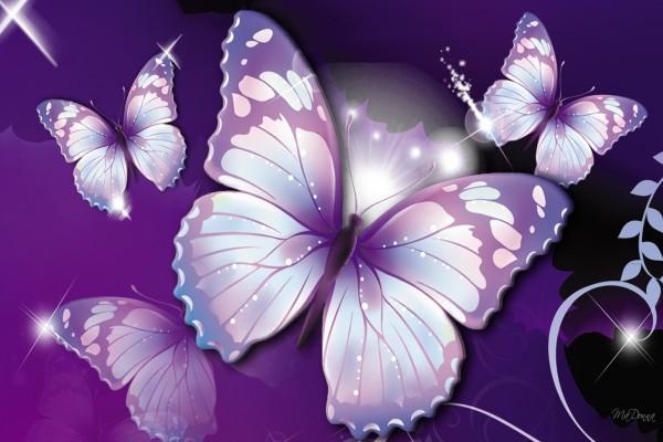 Mariposas Brillantes Animadas De Imagenes