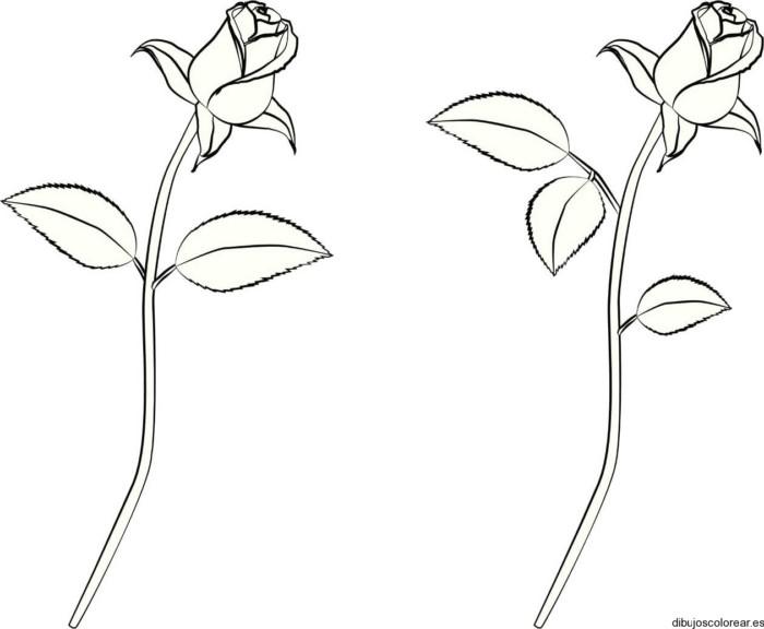 Hermosas Flores Lindas Para Dibujar Dibujos De Flores