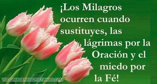 IMAGENES CRISTIANAS DE MILAGROS