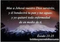 A vuestro Dios serviréis y él bendecirá tu pan y tus aguas