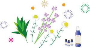 第22回アトピー・アレルギー・生活習慣病のセミナー,旭川,重曹,超重曹