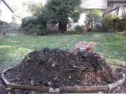 Soil on hugel wood bed