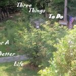 Three Things To Do For A Better Life