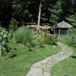 Asparagus as the centerpiece of a U-Shaped garden area
