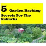 I learned 5 Garden Hacking For The Suburbs because I wanted to grow food for my family